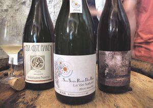 1pet-nat_wine_fair_la-pangee_imports_japan_petnat
