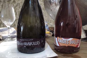 1pet-nat_wine_fair_patrice_lescarret_causse_marines_bulles