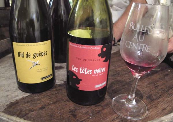 Wine Tasting Vineyards In France Natural Sparkling Pet