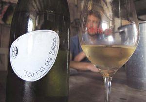 1reynald_heaule_terre_de_silice_white_label_glass