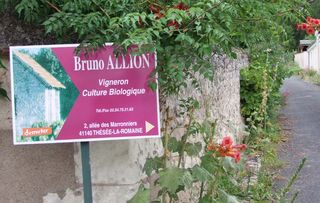 1bruno_allion_lane_sign