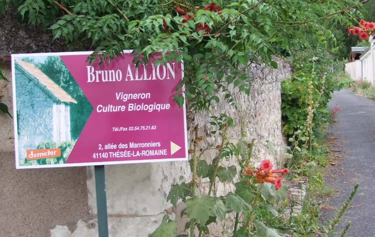 1bruno_allion_lane_sign