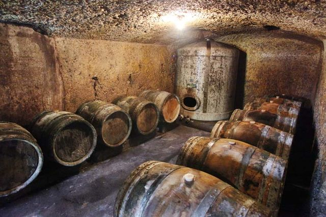 1bruno_allion_cellar2_casks_whites