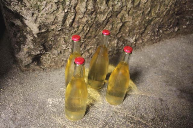 1capriades_bottles_in_a_corner