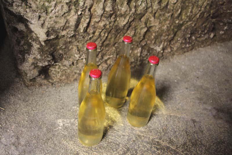 1capriades_bottles_in_a_corner