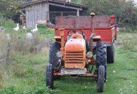 1preparation500_bruno_allion_tractor_geese