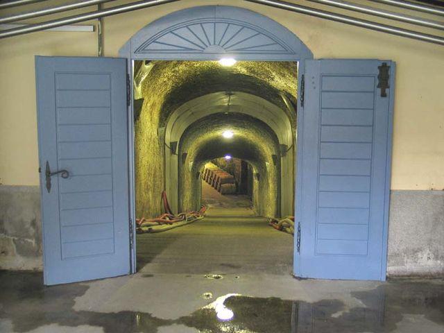 1disznoko_cellar_door