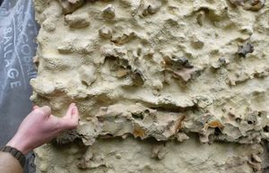 1joel_courtault_cellar_wall_chalk_silex