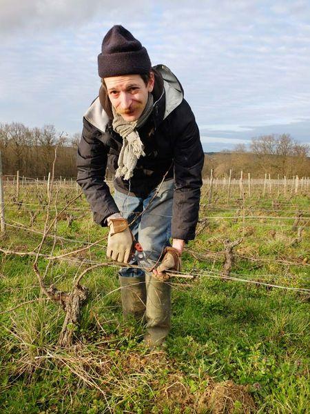 1ben_nerot_pruning_chardonnay_touraine