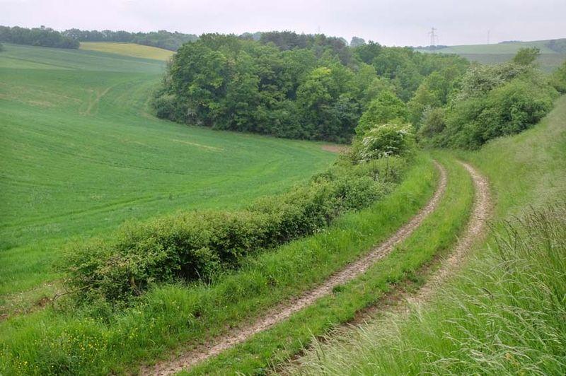 1ferme_de_la_chappe_slope_valley