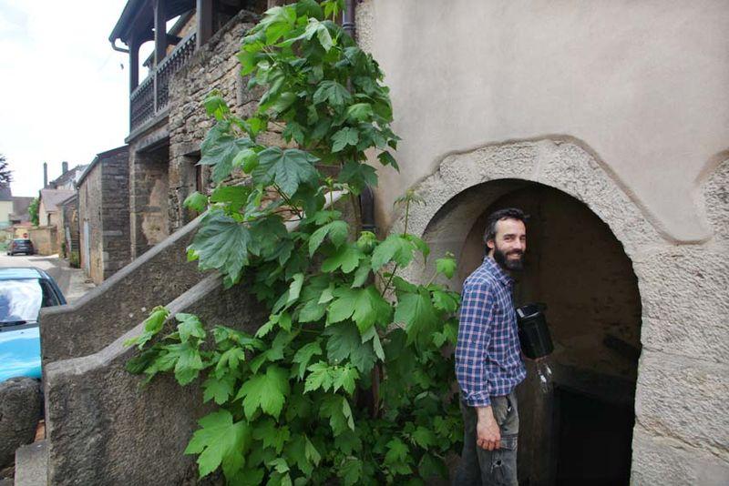 1maison_romane_oronce_de_beler_cellar_door