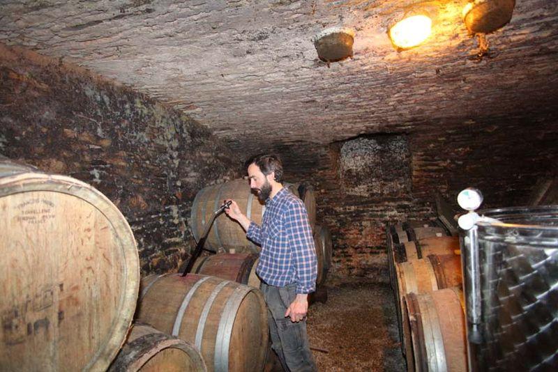 1maison_romane_burgundy_barrel_tasting