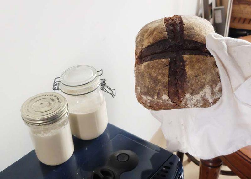 1petit-epeautre_bread_surdough_jars