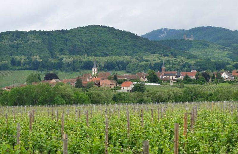1jean-pierre_rietsch_mittelbergheim_view