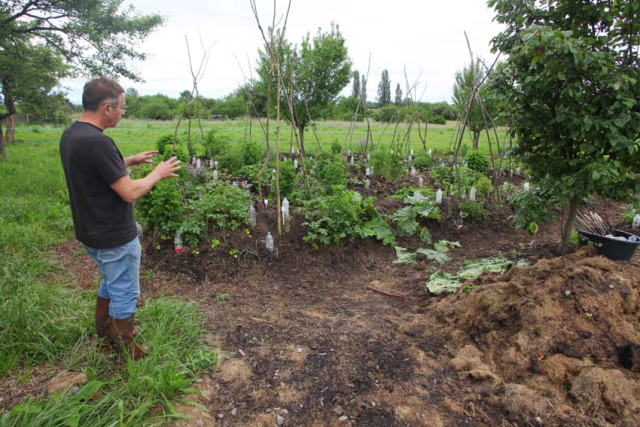 1jean-pierre_rietsch_organic_vegetable_garden