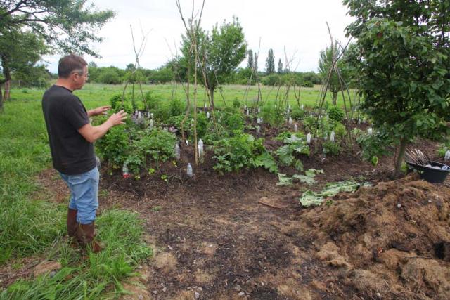 1jean-pierre_rietsch_organic_vegetable_garden