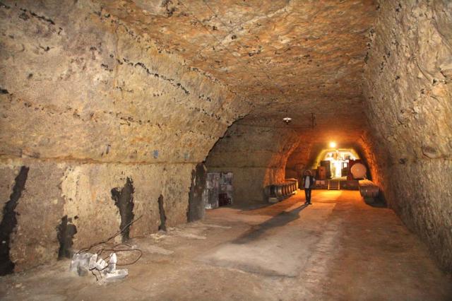 1nicolas_renard_the_elevage_cellar