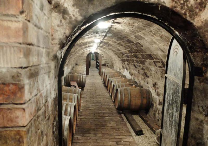 1judit_bodo_bott_pince_cellar_bottom