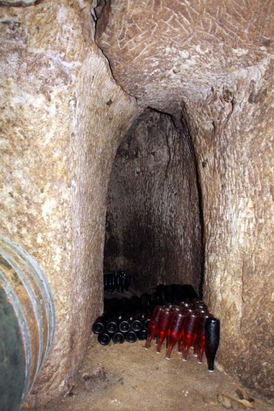 1julien_prevel_cellar_bottle_library