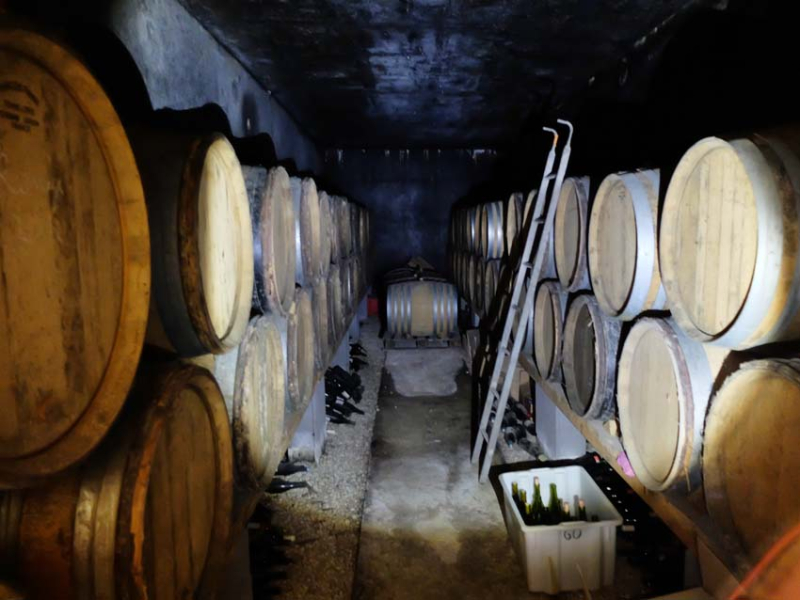 1andrea_calek_barrel_cellar