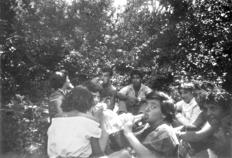 1wine_scene_picnic1953