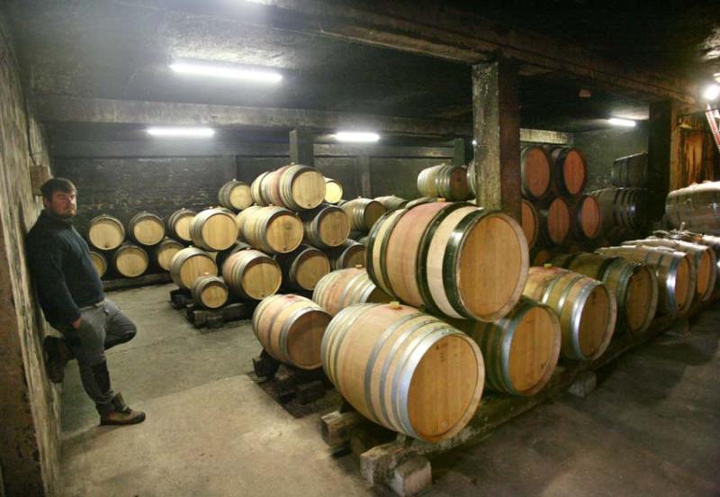 1marc_soyard_cellar_barrels