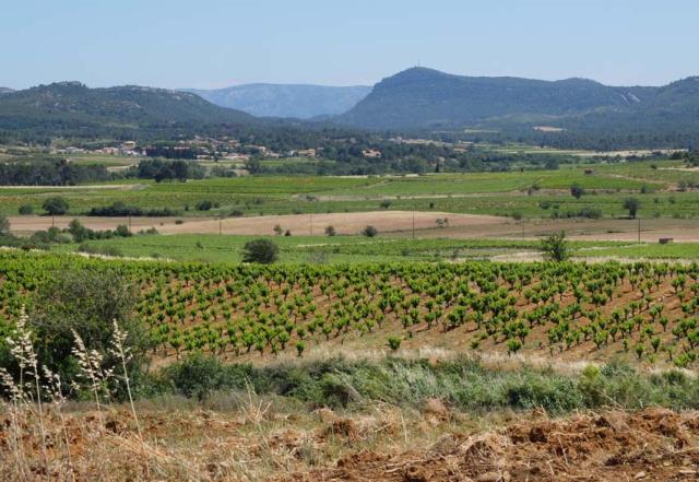 1boutenac_terroirs_landscape