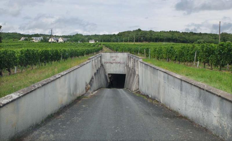 1sebastien_david__underground_cellar_complex
