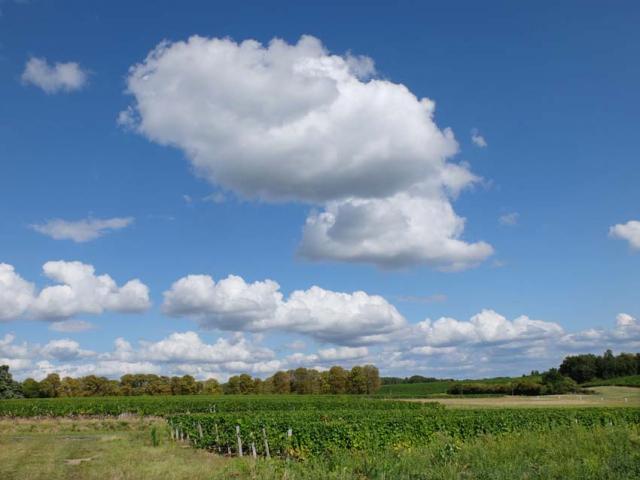1damien_menut_parcel_sky_clouds