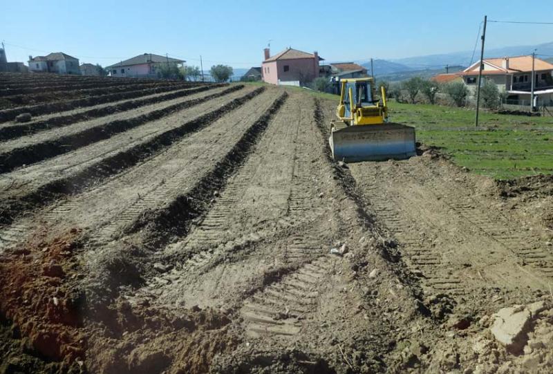 1douro_new_terraces_on_slope