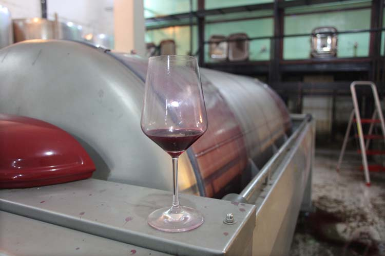 1dettori_tenute_press_juice_cannonau