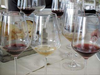 1dettori_tenute_wine_glasses