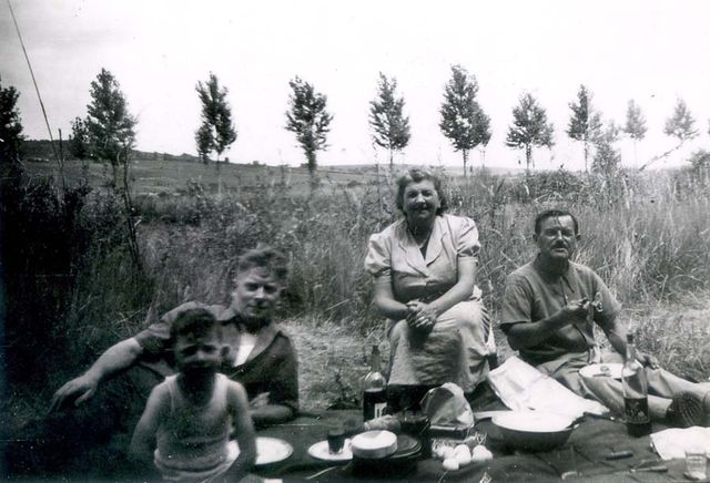 1old_wine_pics_picnic_poplar_trees1950
