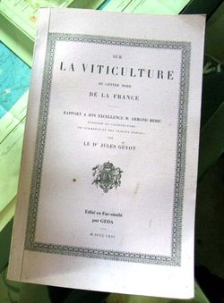 1jules_guyot_viticulture_centre_nord_france