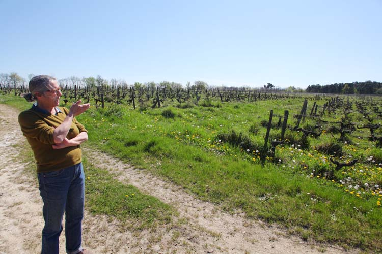 1clos_roche_blanche_with_catherine_in_vineyard