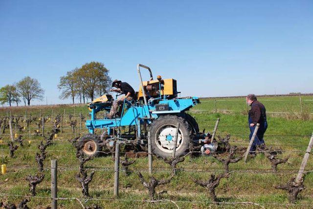 1pepiere_plowing_between_rows