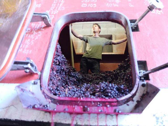 1yvon_metras_pressing_aaron_inside_fermenter