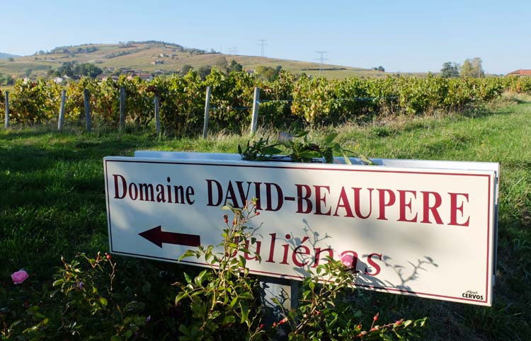 1david-beaupere_beaujolais_road_sign