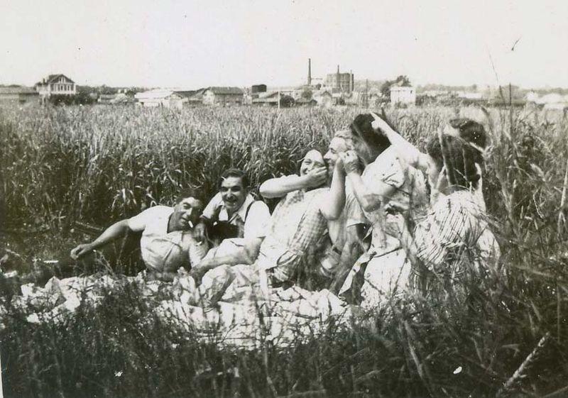 1wine_scenes_happy_party_wheat_field_est1952