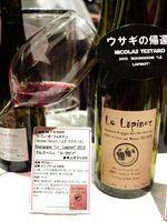 1festivin2015_le_lapinot_testard