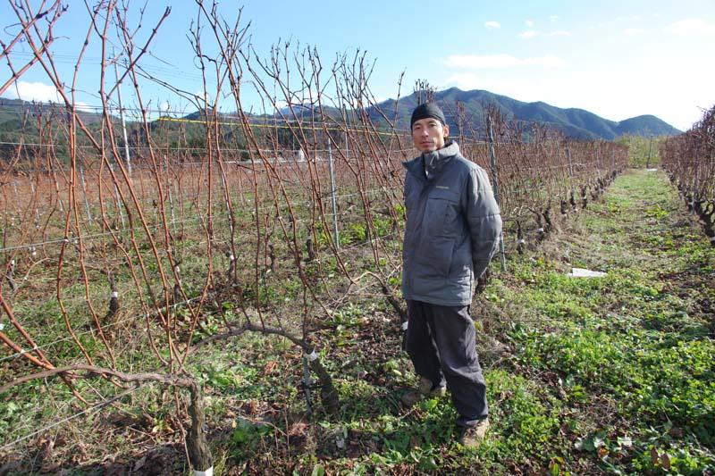 1beau_paysage_eishi_okamoto_in_his_vineyards