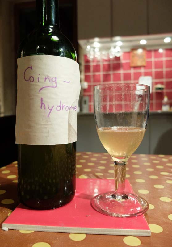 1vin_coing_quince_hydromel