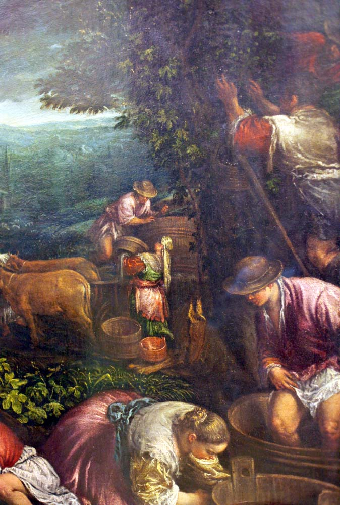 1harvest_scenes_picking_italy_late16th