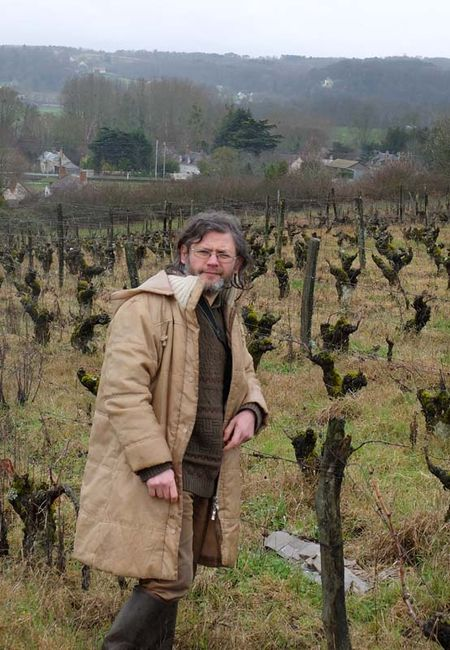 1joel_courtault_old_vines