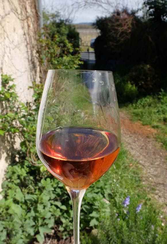 1rousset-peyraguey_sauternes_table_wine