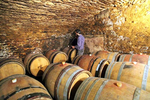 1maison_romane_oronce_barrel_cellar