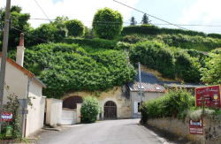 1amboise_cellars_facilities_clif_houses