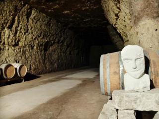1nicolas_renard__cellar_sculture