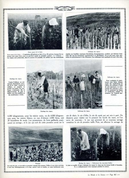 1champagne_1920s-4