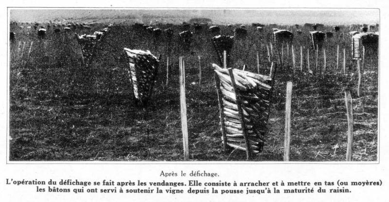 1champagne_1920s-1defichage